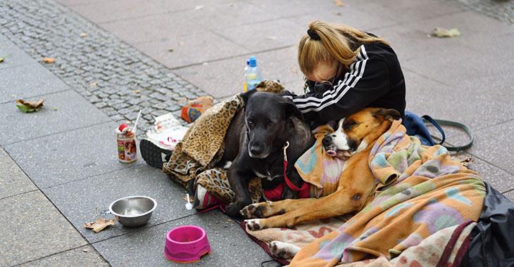 Eine obdachlose Frau sitzt auf der Straße auf Decken zusammen mit zwei Hunden