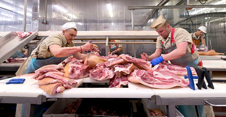Arbeiter zerteilen Fleisch in einer Fleischfabrik / einem Schlachthof. Foto: © istock.com/IP Galanternik D.U.