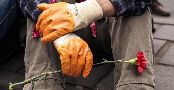 Ein Mann mit Arbeitshandschuhen hält eine Mai-Nelke © picture alliance/abaca