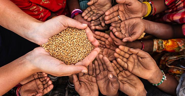 Getreideausgabe: Hände hungriger afrikanischer Kinder