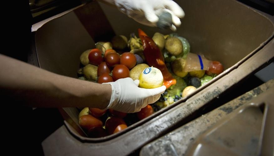 Obst und Gemüse in einer Mülltonne © picture alliance/picturedesk.com