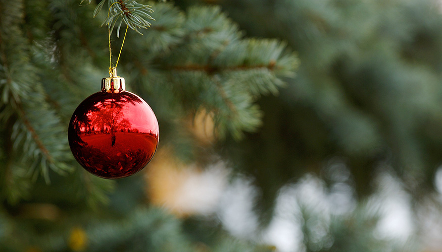 Rote Weihnachtskugel an einer Tanne