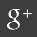 Die Linksfraktion bei Google+